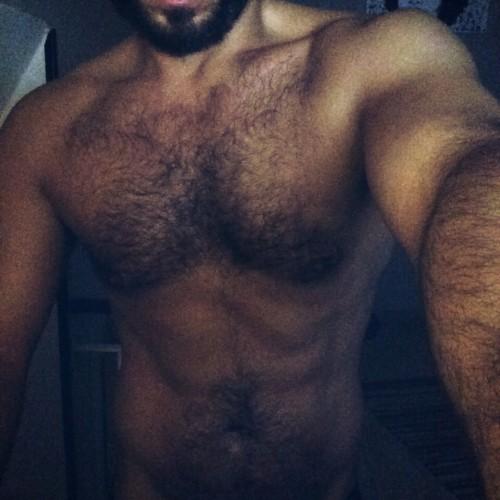 top escort a palermo gay male gigolo